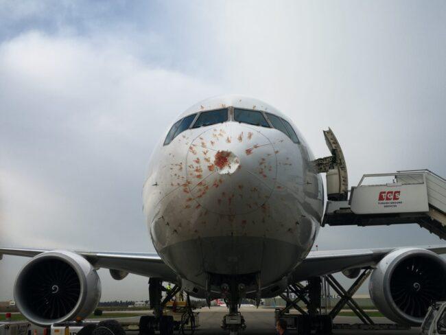 THY pilotu, uçağı faciadan kurtardı