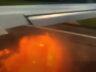 Azur Air uçağının motoruna kuş girdi