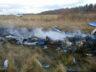 Rusya'da küçük uçak düştü 2 kişi hayatını kaybetti